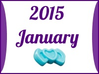 LEGO Friends January 2015